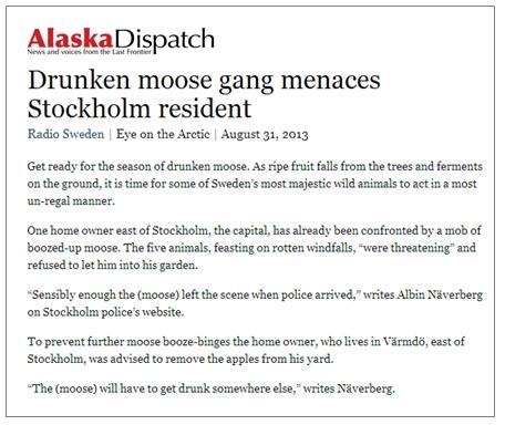 DrunkMoose